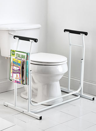 Main Toilet Safety Support